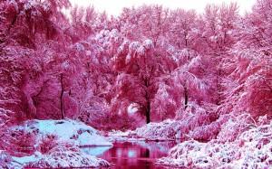 wintr pink